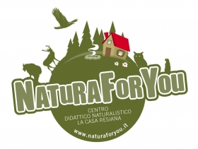 DISCOVER JULIAN ALPS AND PREALPS - Natura For You